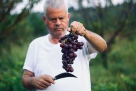 Warum wir direkten Kontakt zu Landwirten pflegen