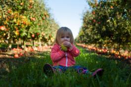 Rohkost und Kinder? 7 Tipps für eine natürliche Ernährung